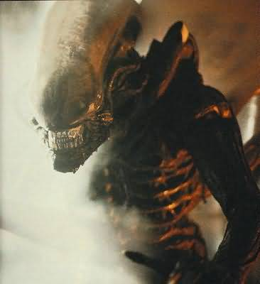 Movie_Alien_Ridley Scott